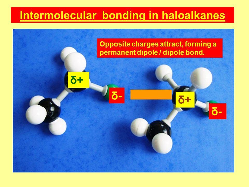 δ-δ- δ+δ+ δ-δ- δ+δ+ Opposite charges attract, forming a permanent dipole / dipole bond.