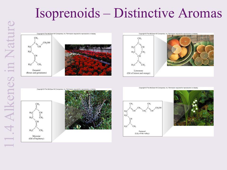 Isoprenoids – Distinctive Aromas 11.4 Alkenes in Nature