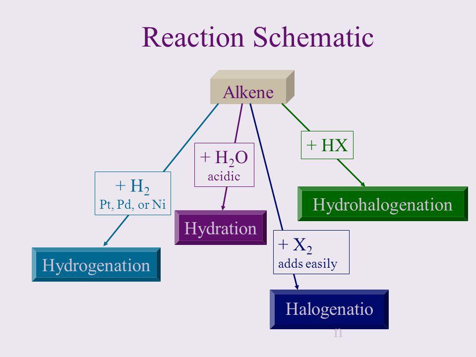 Reaction Schematic Alkene Hydrogenation Hydration Halogenatio n Hydrohalogenation + H 2 Pt, Pd, or Ni + H 2 O acidic + X 2 adds easily + HX