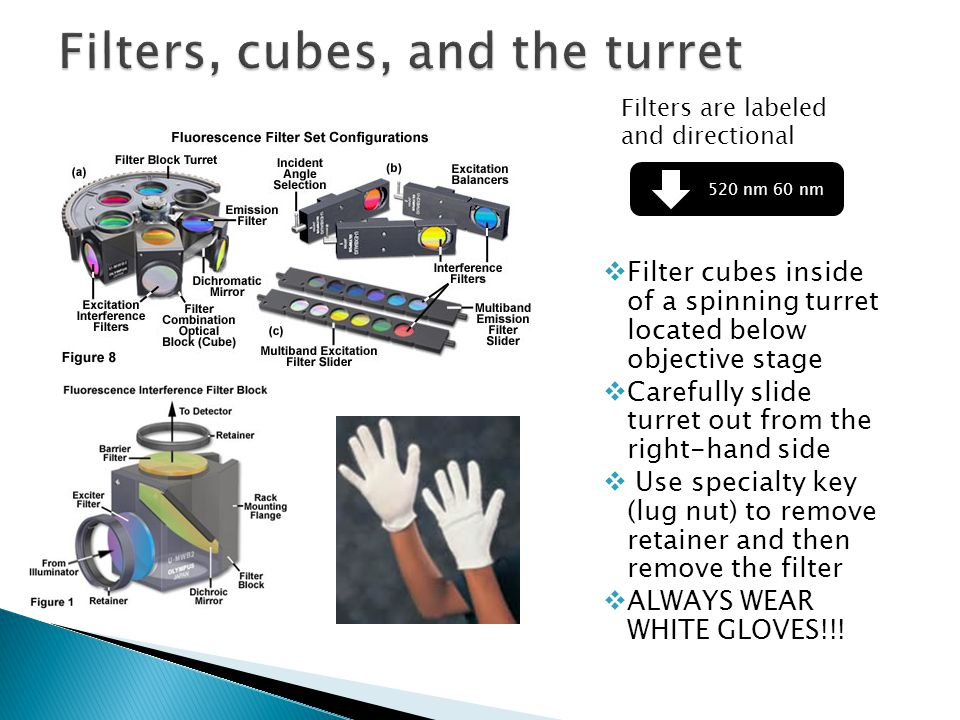  Filter cubes inside of a spinning turret located below objective stage  Carefully slide turret out from the right-hand side  Use specialty key (lug nut) to remove retainer and then remove the filter  ALWAYS WEAR WHITE GLOVES!!.