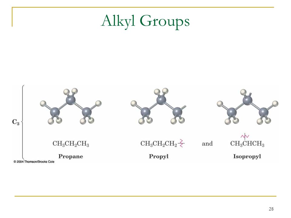 28 Alkyl Groups