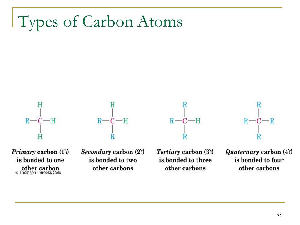 31 Types of Carbon Atoms
