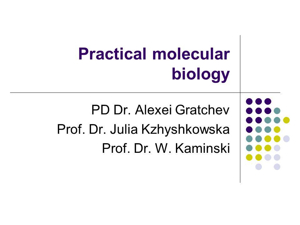 Practical molecular biology PD Dr. Alexei Gratchev Prof. Dr. Julia Kzhyshkowska Prof. Dr. W. Kaminski