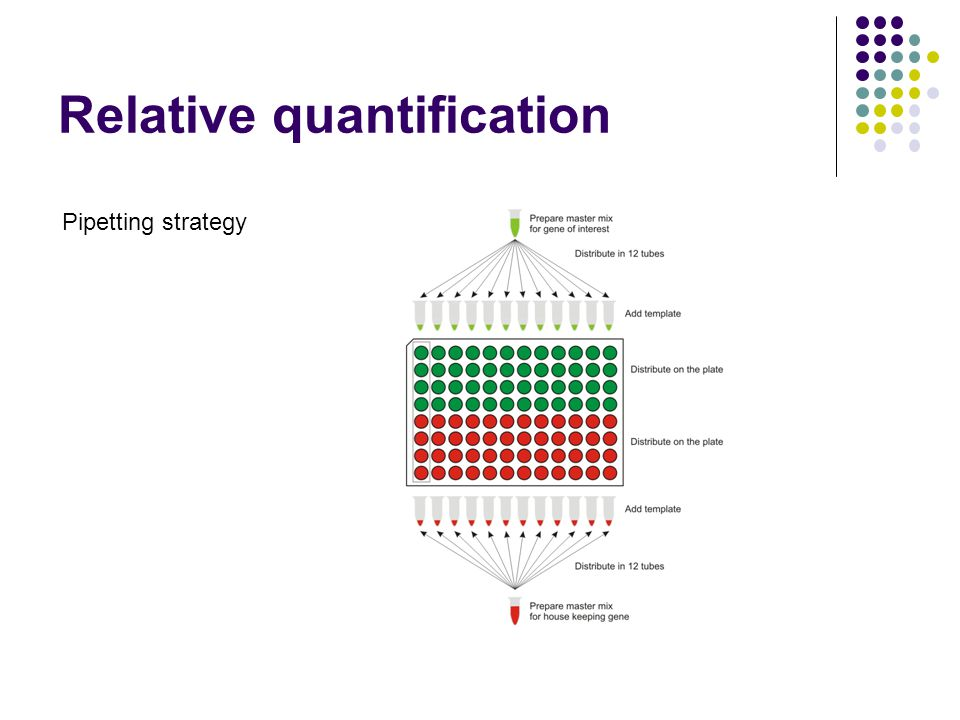 Relative quantification Pipetting strategy