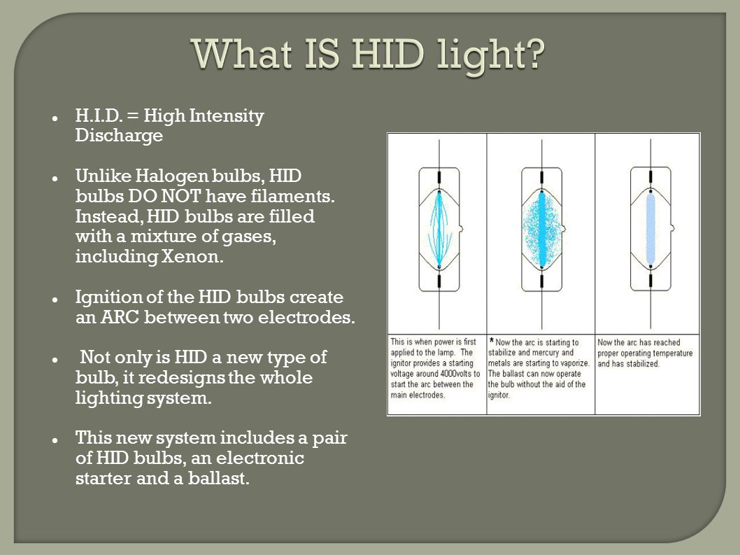 The light produced by an HID bulb is actually white and only appears blue in comparison to the warmer (yellow) light produced by halogen bulbs.