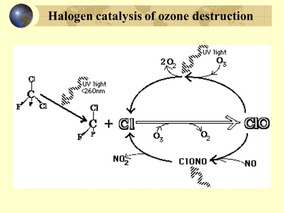 ozone: Halogen catalysis of ozone destruction
