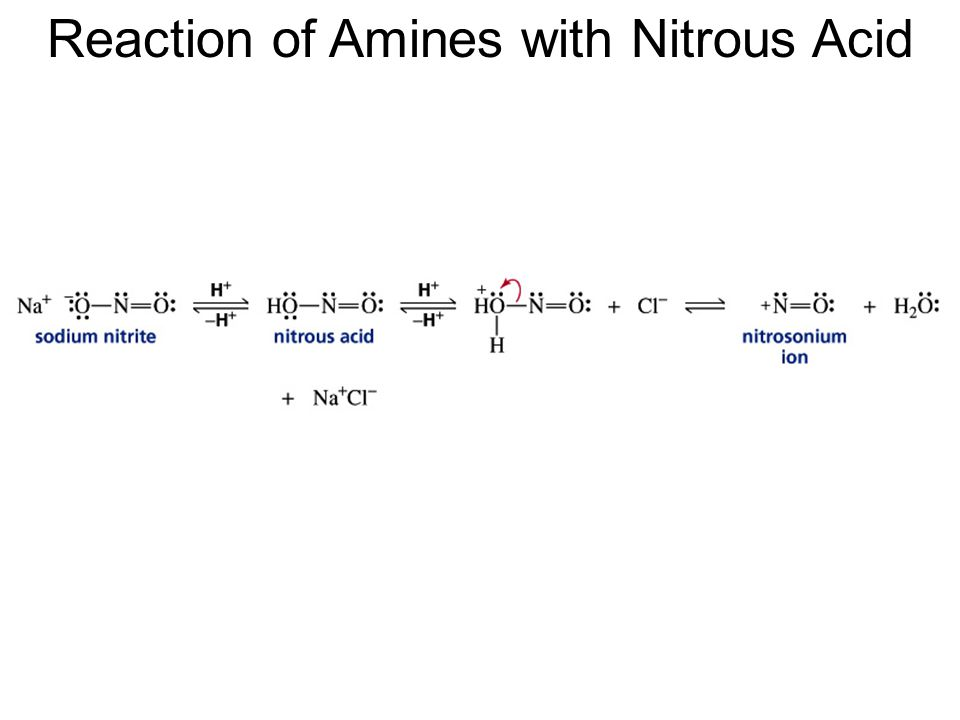 Reaction of Amines with Nitrous Acid