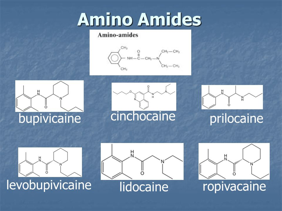 Amino Amides bupivicaine cinchocaine levobupivicaine lidocaine prilocaine ropivacaine
