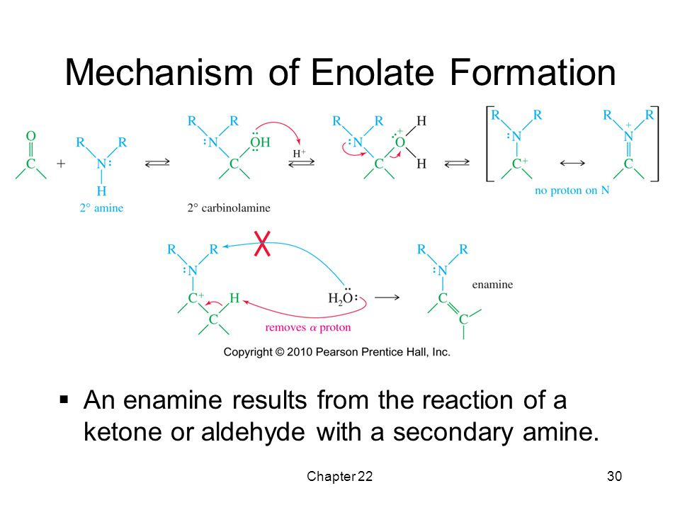 Chapter 2230 Mechanism of Enolate Formation  An enamine results from the reaction of a ketone or aldehyde with a secondary amine.