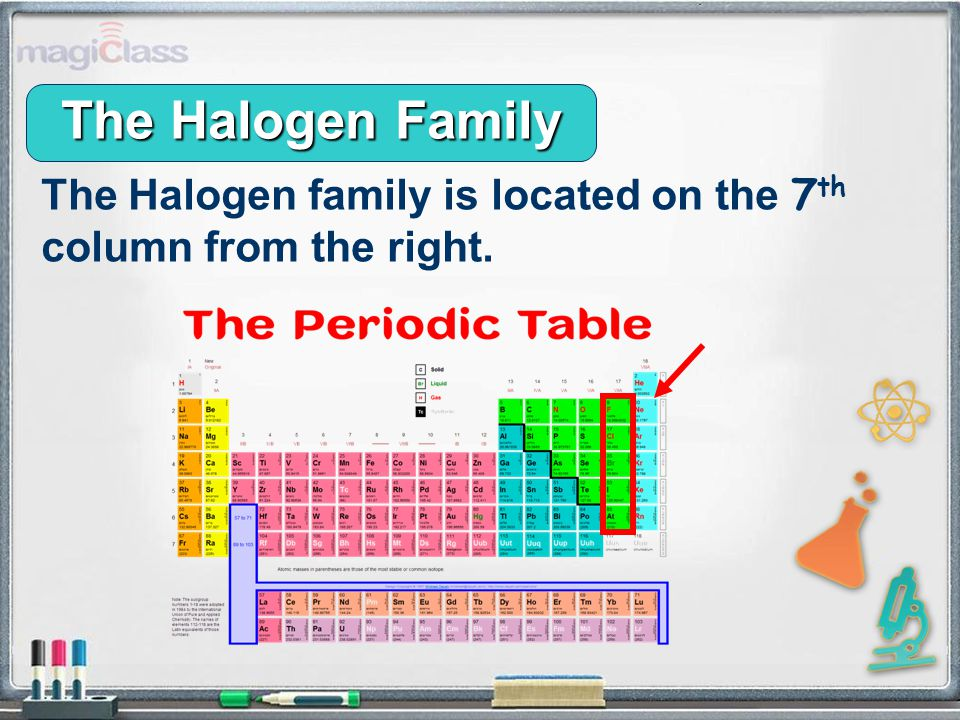 The Halogen Family The Halogen family is located on the 7 th column from the right.