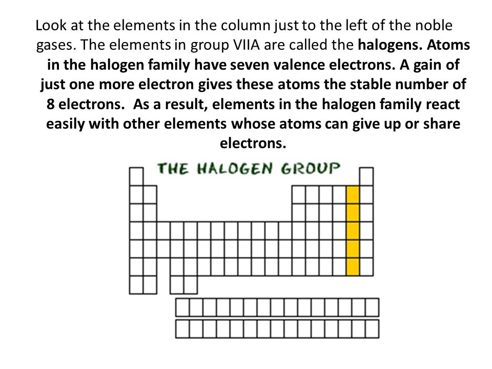 Look at the elements in the column just to the left of the noble gases. The elements in group VIIA are called the halogens. Atoms in the halogen famil