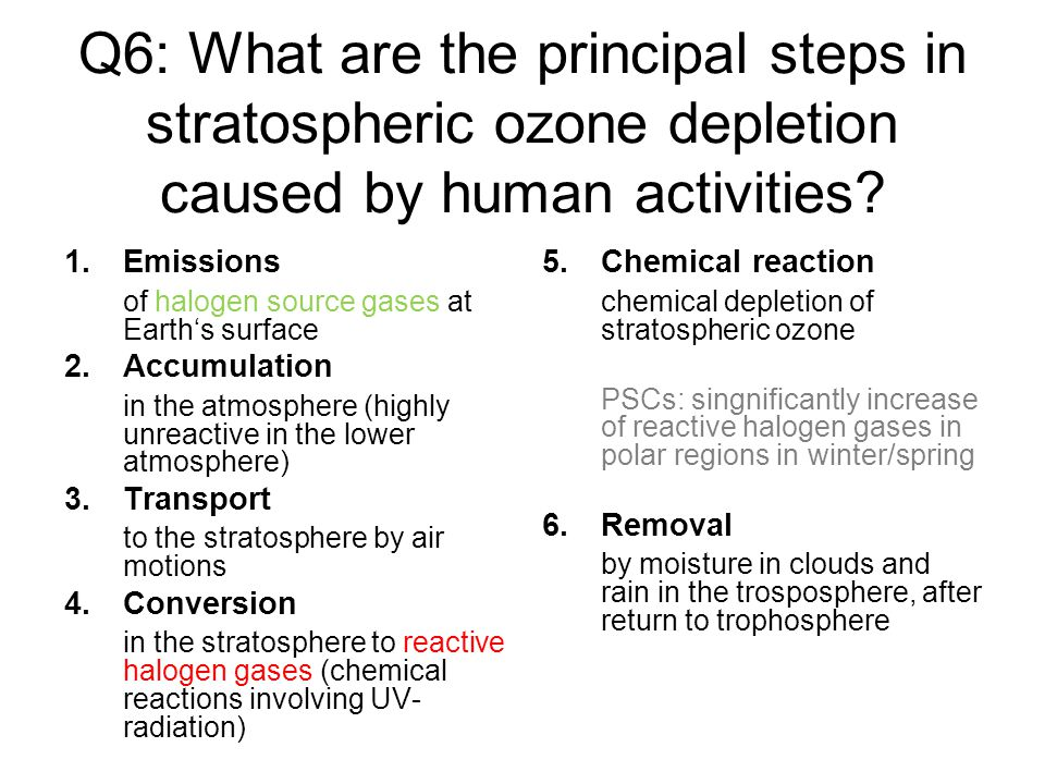 Q6: What are the principal steps in stratospheric ozone depletion caused by human activities.