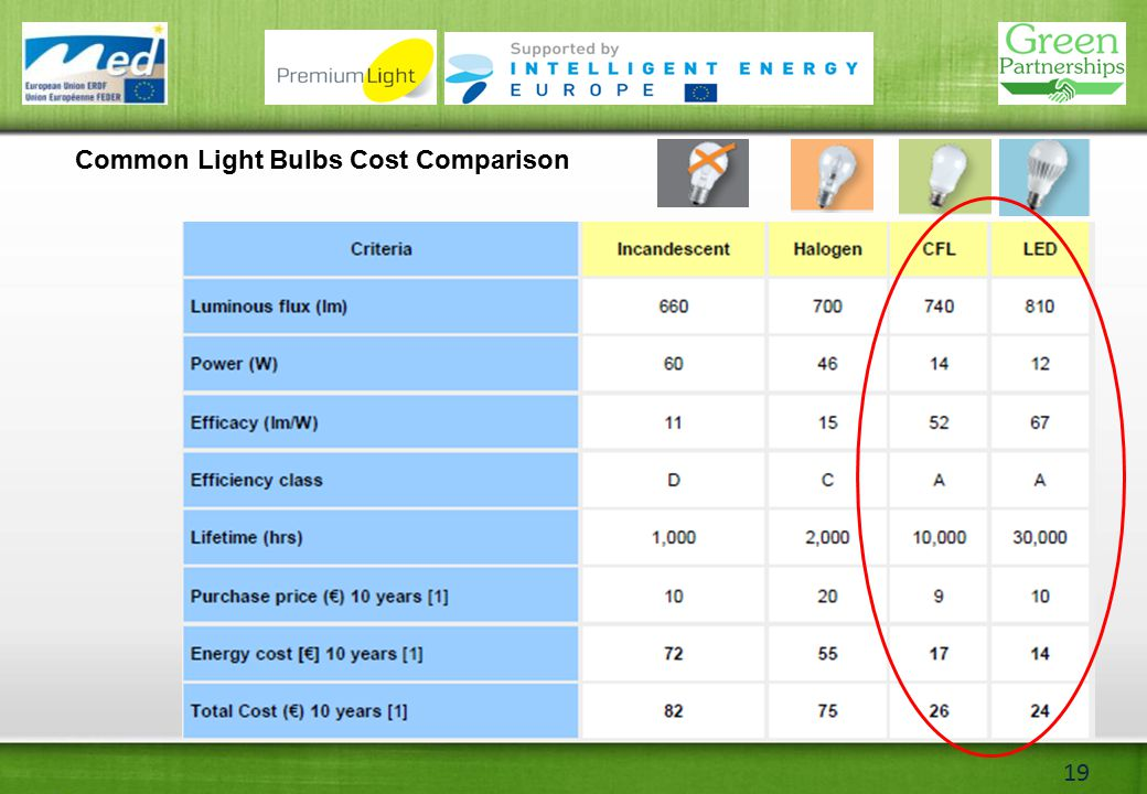 19 Common Light Bulbs Cost Comparison