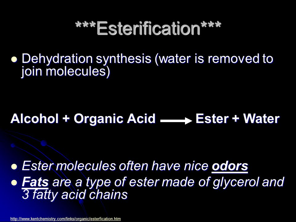 ***Esterification*** Dehydration synthesis (water is removed to join molecules) Dehydration synthesis (water is removed to join molecules) Alcohol + O