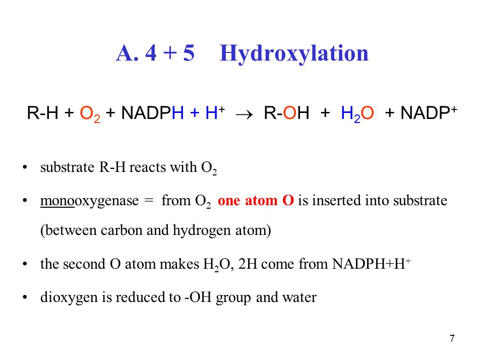 7 A. 4 + 5 Hydroxylation R-H + O 2 + NADPH + H +  R-OH + H 2 O + NADP + substrate R-H reacts with O 2 monooxygenase = from O 2 one atom O is inserted