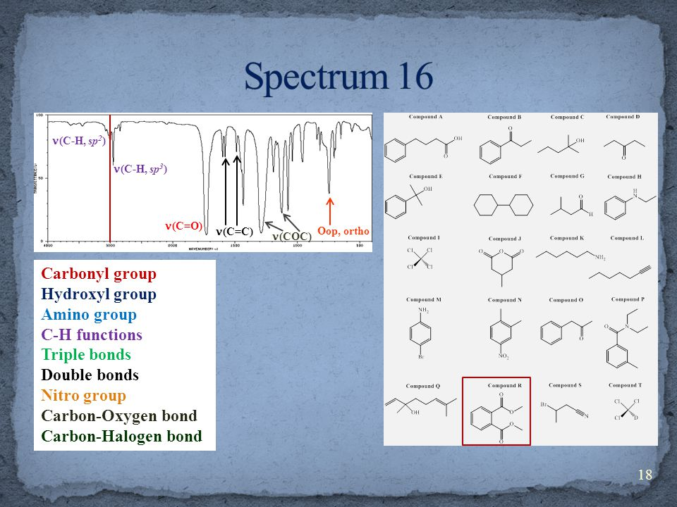 Carbonyl group Hydroxyl group Amino group C-H functions Triple bonds Double bonds Nitro group Carbon-Oxygen bond Carbon-Halogen bond (C-H, sp 3 ) (C-H, sp 2 ) (C=O) (C=C) (COC) Oop, ortho 18