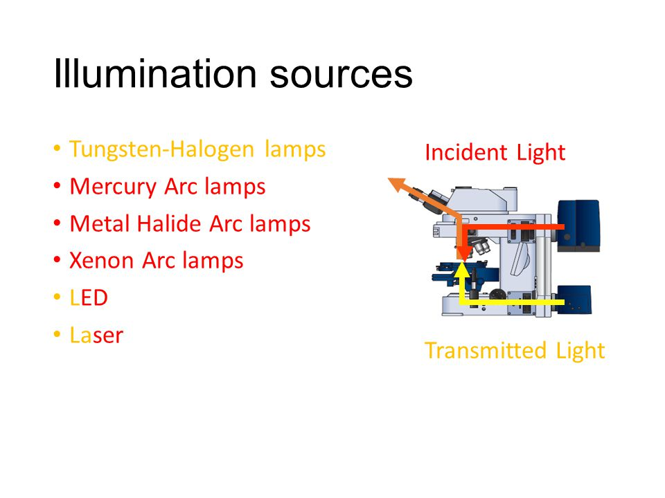 Illumination sources Tungsten-Halogen lamps Mercury Arc lamps Metal Halide Arc lamps Xenon Arc lamps LED Laser Transmitted Light Incident Light