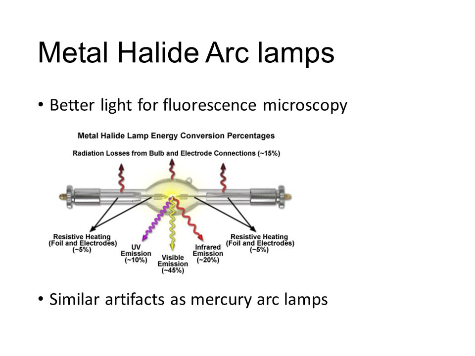 Metal Halide Arc lamps Better light for fluorescence microscopy Similar artifacts as mercury arc lamps