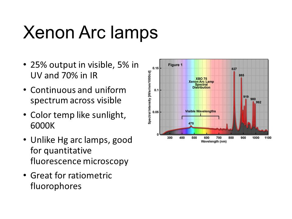 Xenon Arc lamps 25% output in visible, 5% in UV and 70% in IR Continuous and uniform spectrum across visible Color temp like sunlight, 6000K Unlike Hg arc lamps, good for quantitative fluorescence microscopy Great for ratiometric fluorophores