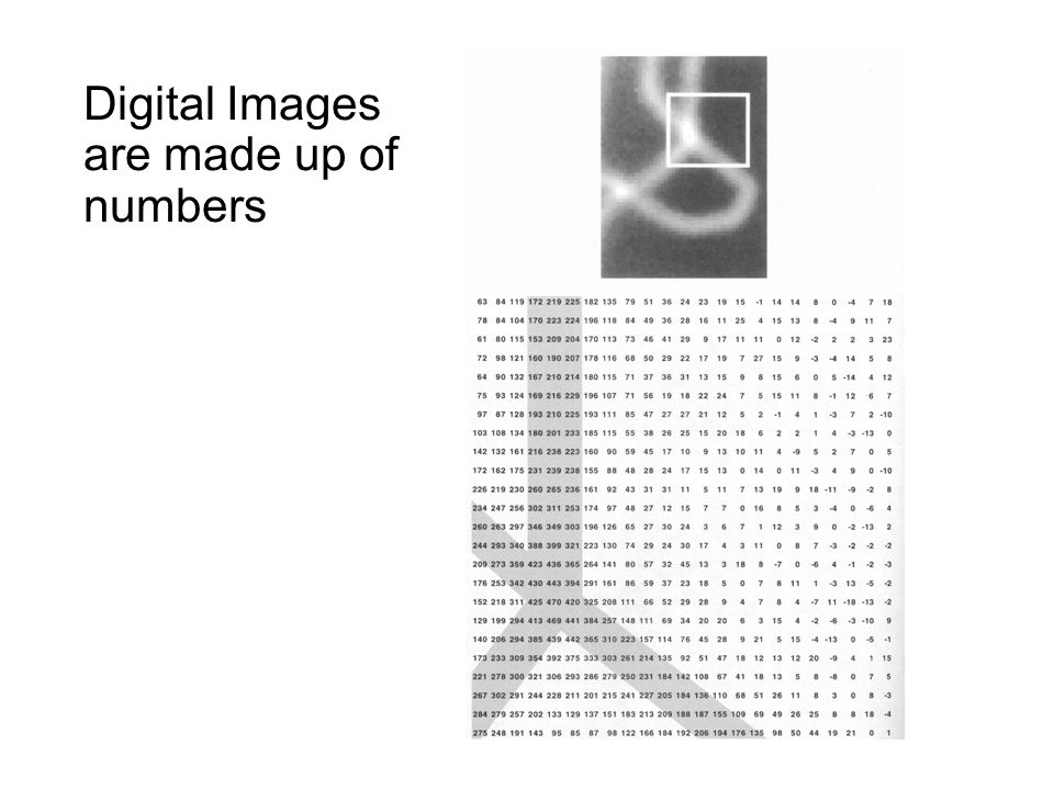 Digital Images are made up of numbers