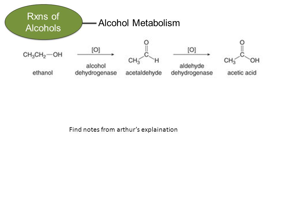 Rxns of Alcohols Alcohol Metabolism Find notes from arthur's explaination