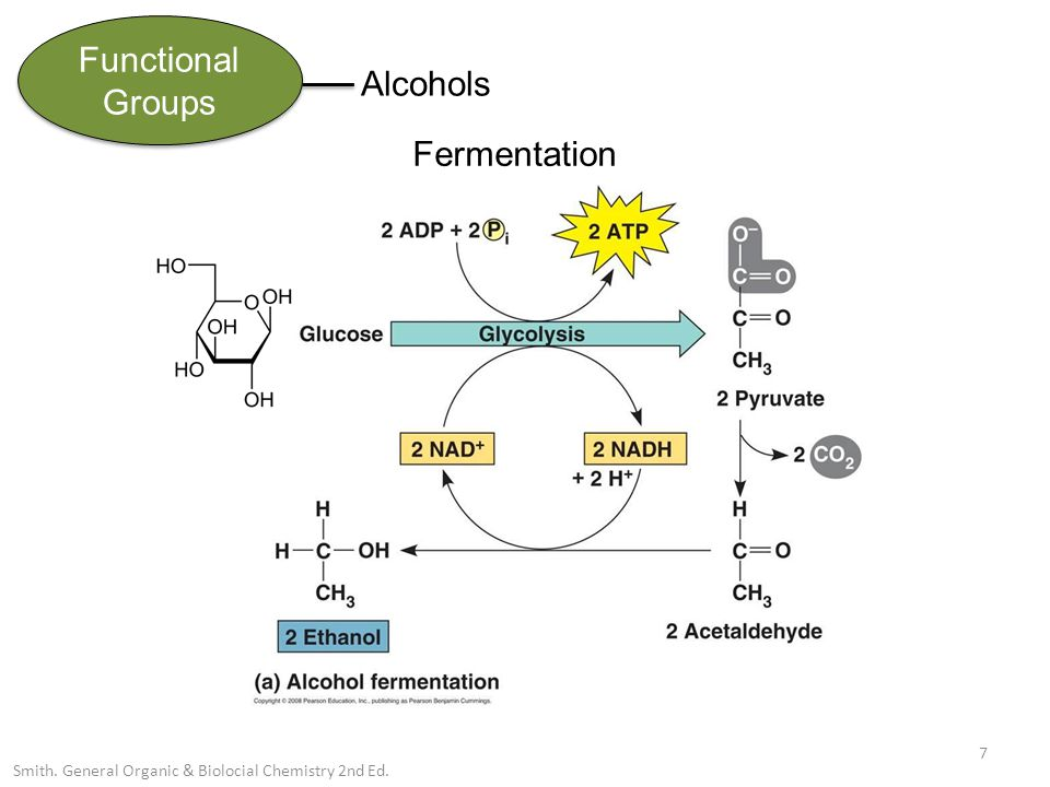 Functional Groups Alcohols 7 Smith. General Organic & Biolocial Chemistry 2nd Ed. Fermentation