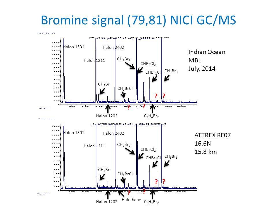 Indian Ocean MBL July, 2014 ATTREX RF07 16.6N 15.8 km Halon 1301 Halon 1211 Halon 2402 Halon 1202 CH 3 Br CH 2 Br 2 CH 3 Br 3 CHBrCl 2 CHBr 2 Cl CH 2 BrCl C 2 H 4 Br 2 .