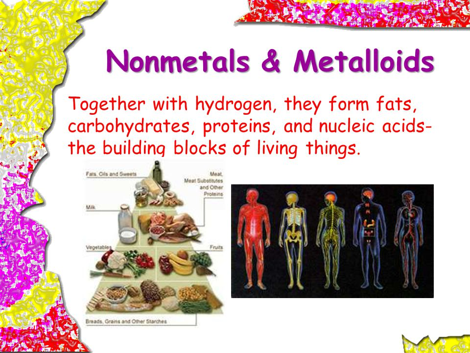 Nonmetals & Metalloids Together with hydrogen, they form fats, carbohydrates, proteins, and nucleic acids- the building blocks of living things.