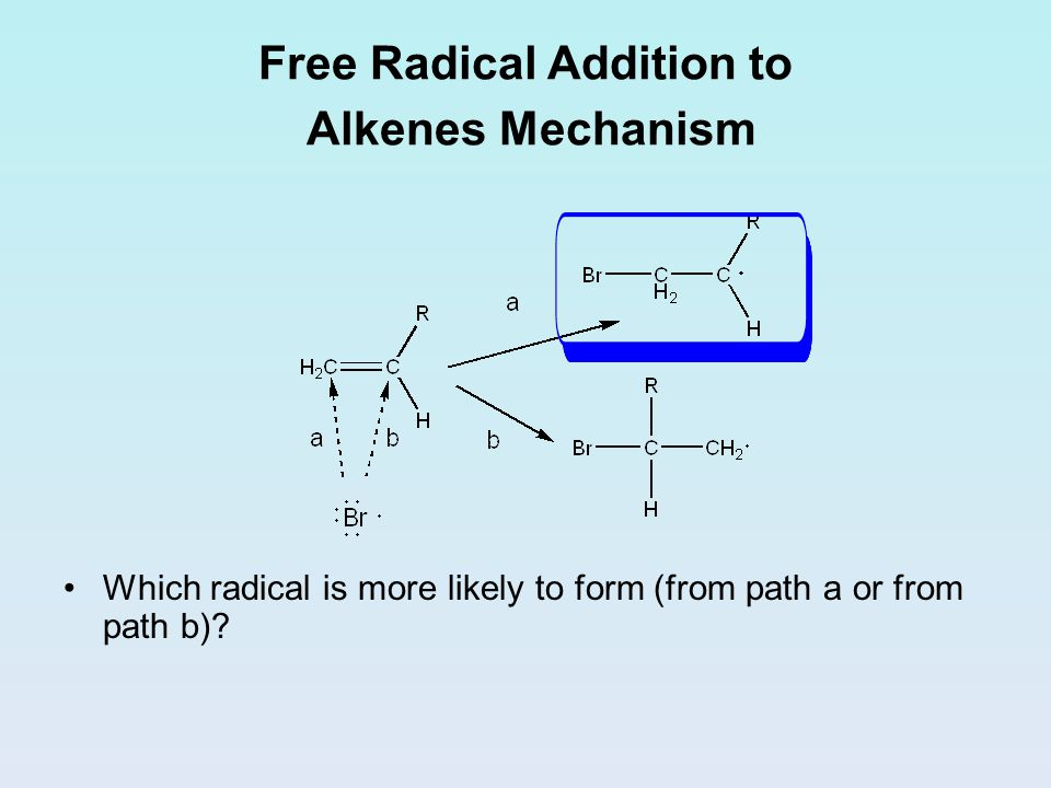 Free Radical Addition to Alkenes Mechanism Which radical is more likely to form (from path a or from path b)?