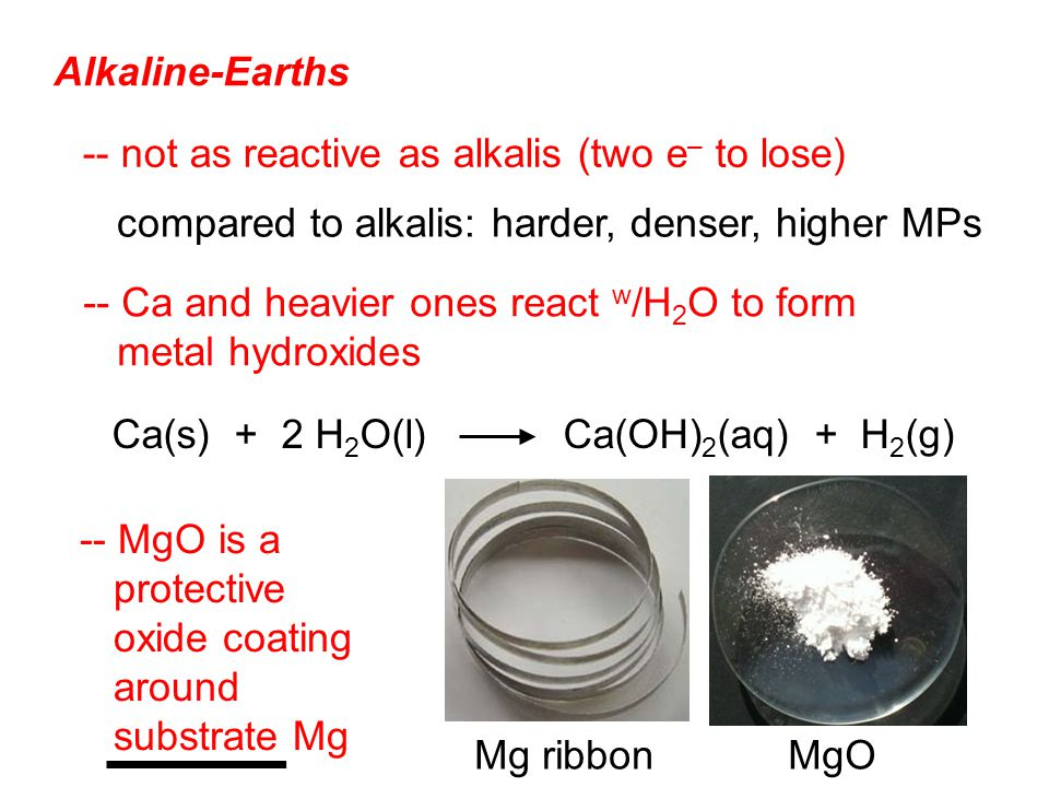 Alkaline-Earths -- not as reactive as alkalis (two e – to lose) -- Ca and heavier ones react w /H 2 O to form metal hydroxides -- MgO is a protective oxide coating around substrate Mg Ca(s) + 2 H 2 O(l) Ca(OH) 2 (aq) + H 2 (g) compared to alkalis: harder, denser, higher MPs Mg ribbonMgO