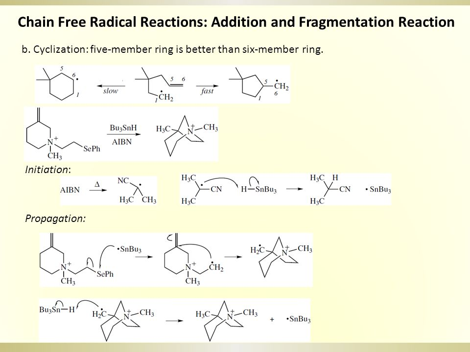 b. Cyclization: five-member ring is better than six-member ring. Chain Free Radical Reactions: Addition and Fragmentation Reaction Initiation: Propaga