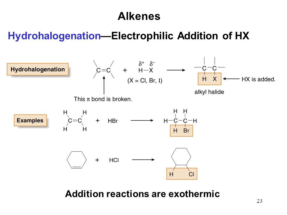 23 Alkenes Hydrohalogenation—Electrophilic Addition of HX Addition reactions are exothermic