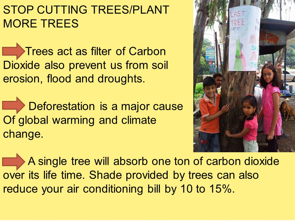 STOP CUTTING TREES/PLANT MORE TREES Trees act as filter of Carbon Dioxide also prevent us from soil erosion, flood and droughts. Deforestation is a ma