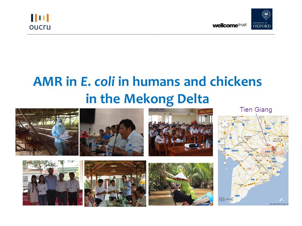 AMR in E. coli in humans and chickens in the Mekong Delta Tien Giang