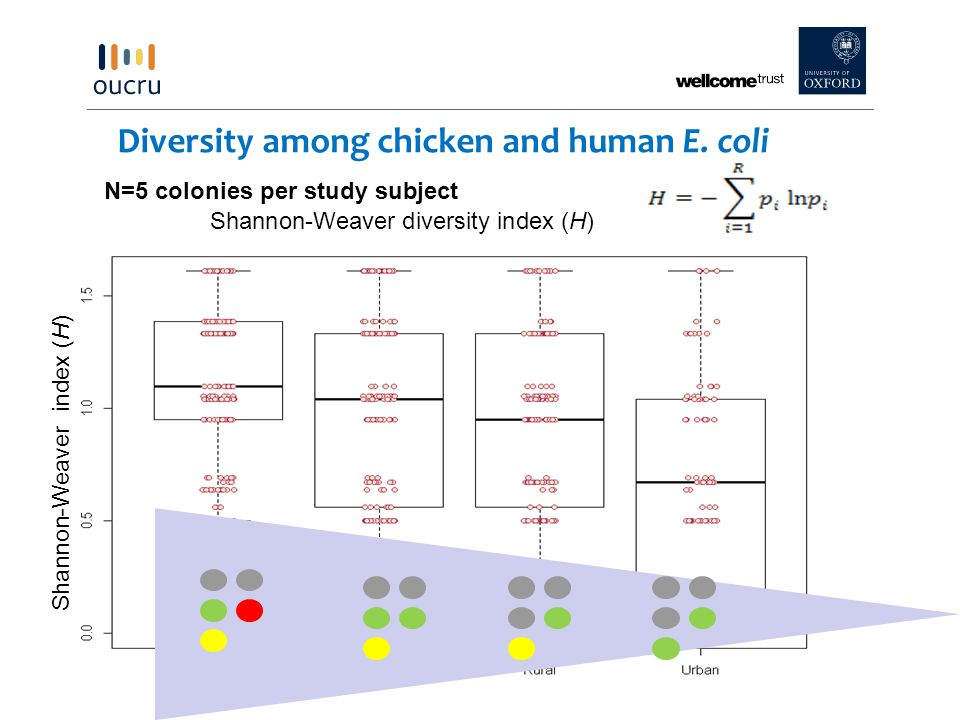 Diversity among chicken and human E.