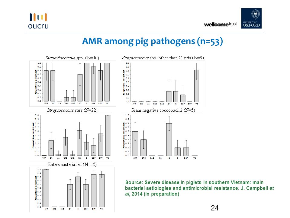 24 AMR among pig pathogens (n=53) Source: Severe disease in piglets in southern Vietnam: main bacterial aetiologies and antimicrobial resistance.