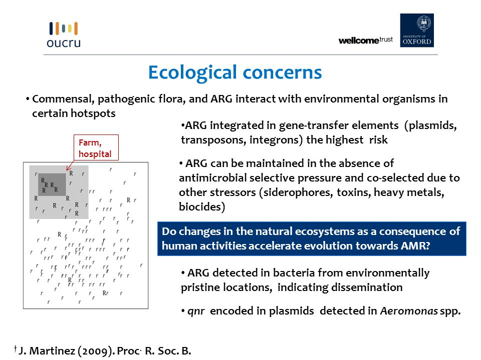 Ecological concerns Commensal, pathogenic flora, and ARG interact with environmental organisms in certain hotspots Farm, hospital qnr encoded in plasmids detected in Aeromonas spp.