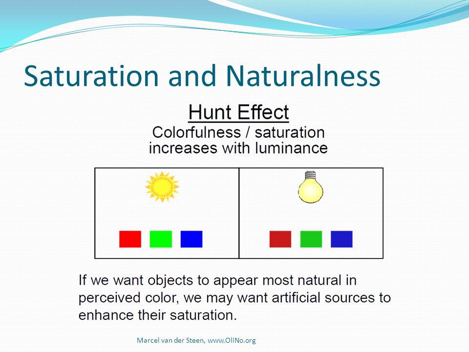 Saturation and Naturalness Marcel van der Steen, www.OliNo.org