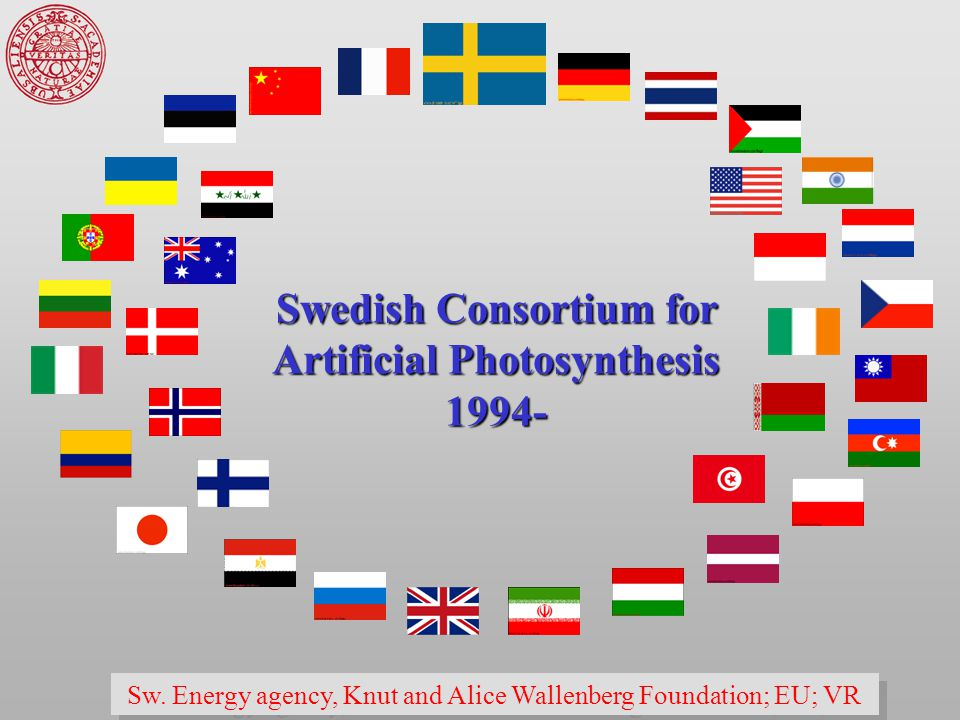 Swedish Consortium for Artificial Photosynthesis 1994- Sw.