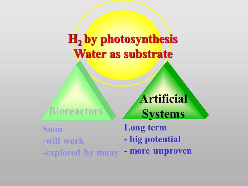 Artificial Systems Bioreactors H 2 by photosynthesis Water as substrate Soon -will work -explored by many Long term - big potential - more unproven
