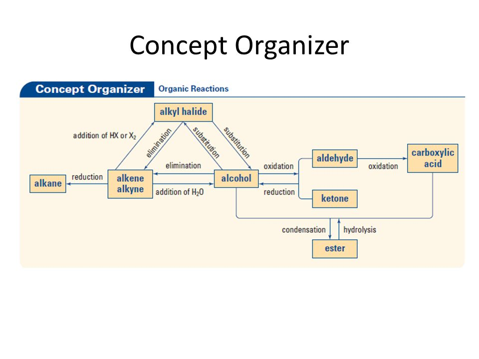 Concept Organizer