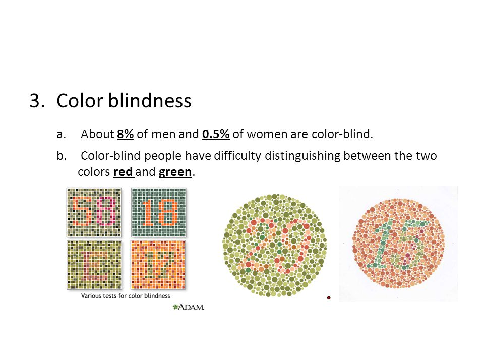 3.Color blindness a. About 8% of men and 0.5% of women are color-blind. b. Color-blind people have difficulty distinguishing between the two colors re