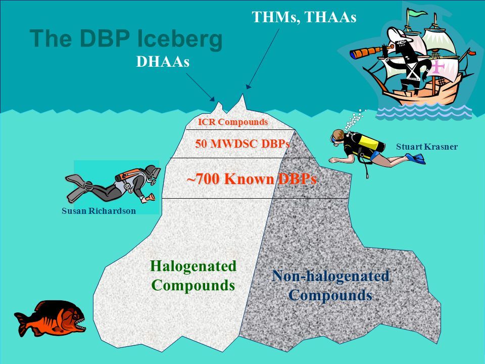 The DBP Iceberg Halogenated Compounds Non-halogenated Compounds ICR Compounds 50 MWDSC DBPs ~700 Known DBPs THMs, THAAs DHAAs Stuart Krasner Susan Richardson