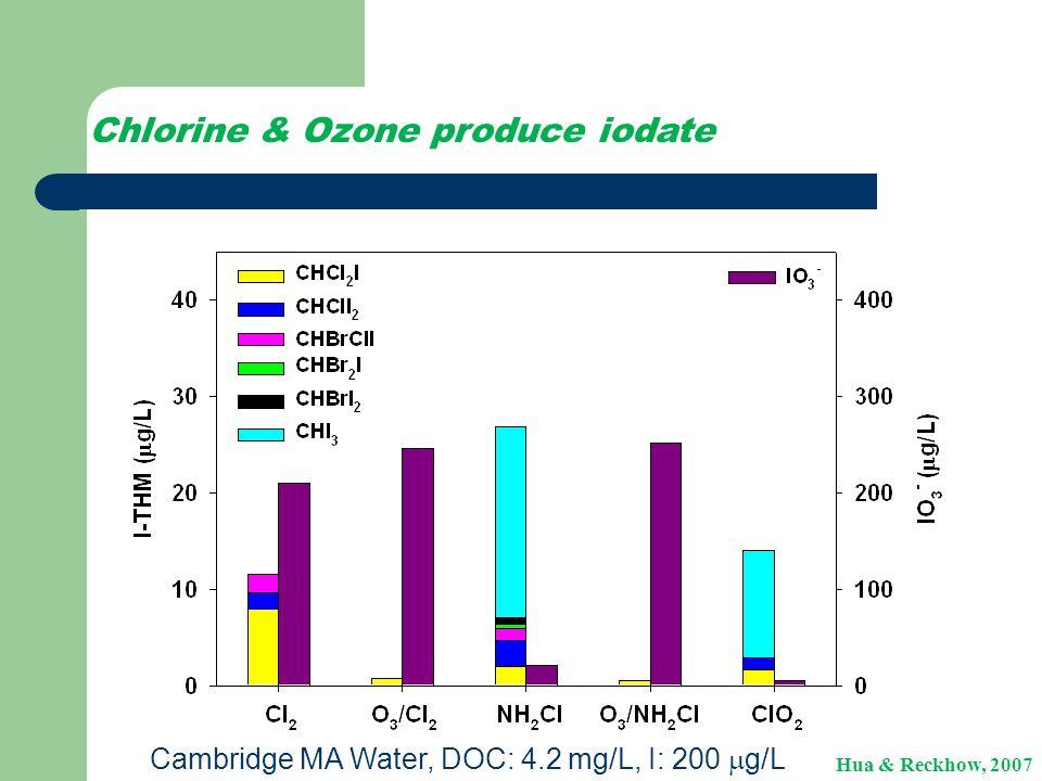 Chlorine & Ozone produce iodate Cambridge MA Water, DOC: 4.2 mg/L, I: 200  g/L Hua & Reckhow, 2007