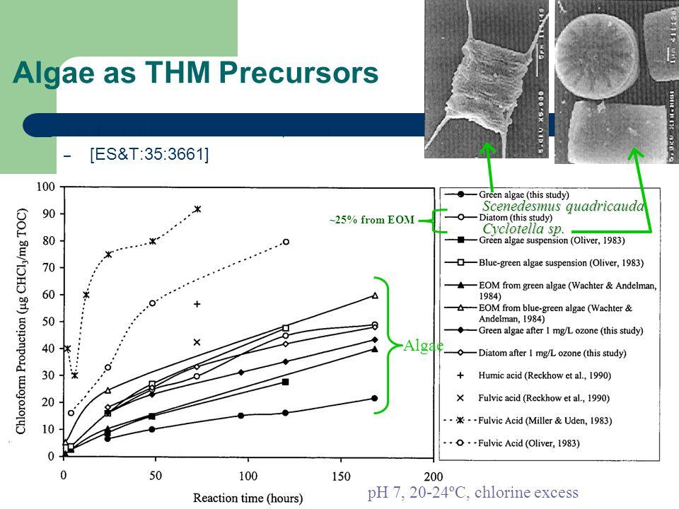 31 Algae as THM Precursors From: Plummer & Edzwald, 2001 – [ES&T:35:3661] Scenedesmus quadricauda Cyclotella sp. ~25% from EOM pH 7, 20-24ºC, chlorine