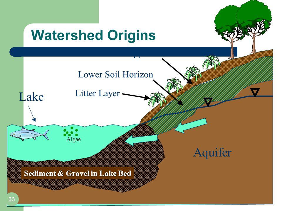 Watershed Origins 33 Aquifer Lake Upper Soil Horizon Lower Soil Horizon Sediment & Gravel in Lake Bed Litter Layer Algae 33