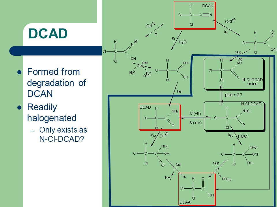 DCAD Formed from degradation of DCAN Readily halogenated – Only exists as N-Cl-DCAD