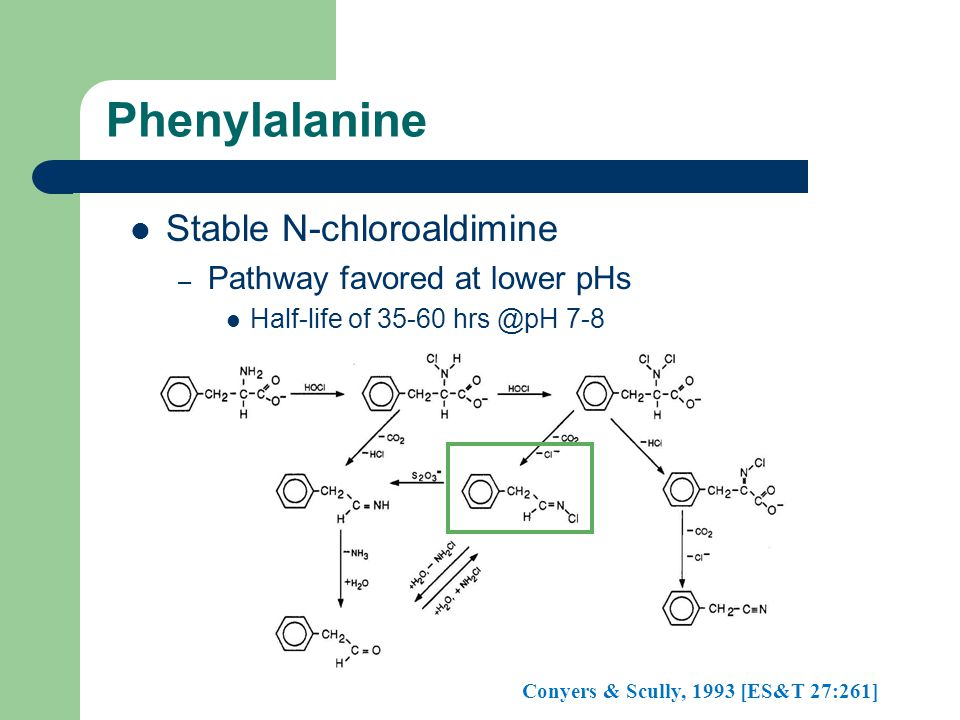 Phenylalanine Stable N-chloroaldimine – Pathway favored at lower pHs Half-life of 35-60 hrs @pH 7-8 Conyers & Scully, 1993 [ES&T 27:261]