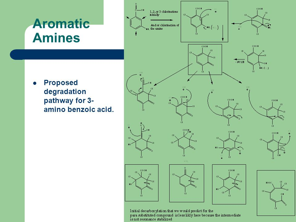 Aromatic Amines Proposed degradation pathway for 3- amino benzoic acid.
