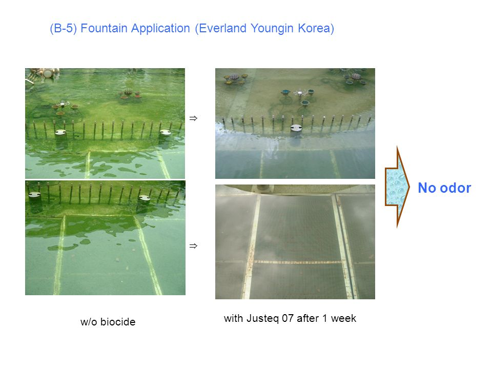 (B-5) Fountain Application (Everland Youngin Korea) ⇒ ⇒ w/o biocide with Justeq 07 after 1 week No odor